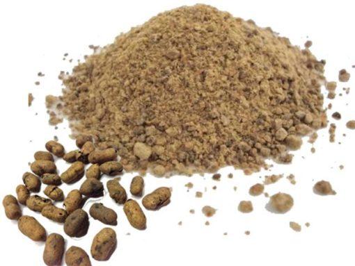 Jamun Seeds (Copy)